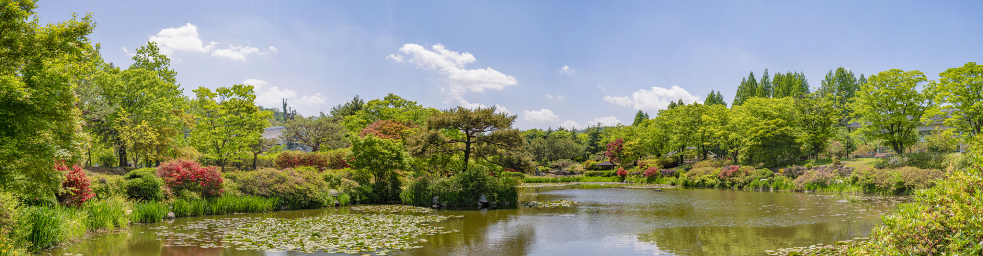 현충원 내 연못