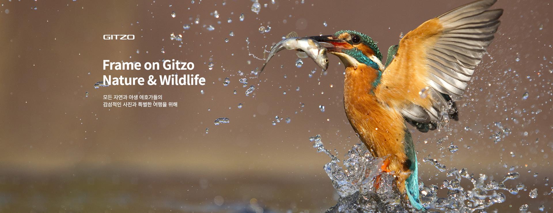 Gitzo Nature & Wildlife